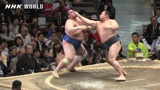 GRAND SUMO Highlights: Bout of Day 5 | May 2019 | NHK WORLD-JAPAN