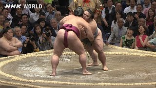 GRAND SUMO Highlights: Bout of Day 4 | May 2019 | NHK WORLD-JAPAN