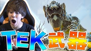 【ARK実況】TEK装備ヤバすぎ泣いた-PART41-【ark survival evolved(Extinction)】